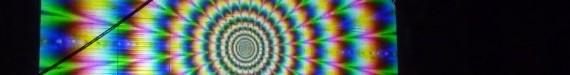 Slip Disc image